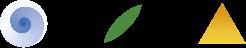 Frantoio-Montecchia-logo-linea-classico-Olio-extra-vergine-d'oliva-Morro-D'Oro-Teramo-Abruzzo