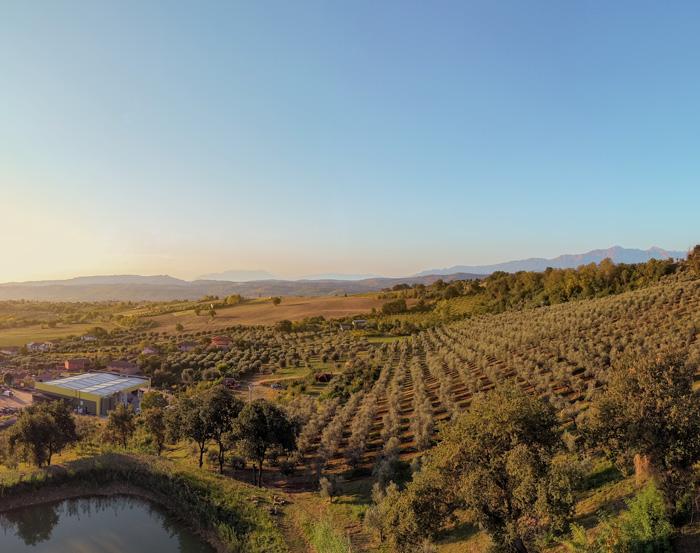 Frantoio-Montecchia-Territorio-vieni-a-trovarci-Morro-D'Oro-Teramo-Abruzzo-bellezza